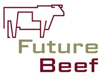 Future beef