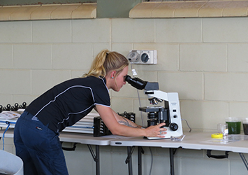 Samantha Nowland undertaking research work in the laboratory.