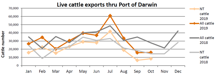 Graph cattle exports through port of Darwin