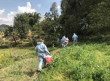 Strengthening the Territory's biosecurity preparedness