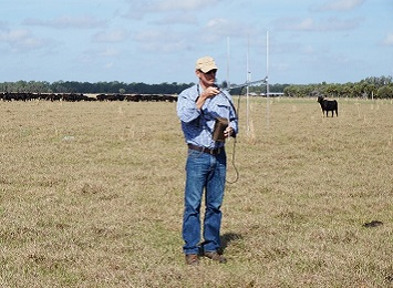 Remote monitoring of calving could be a game changer