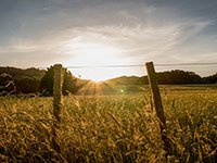 landscape of sunset in front of field with pasture fence