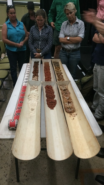 Image: Attendees viewing the NT's major soil types
