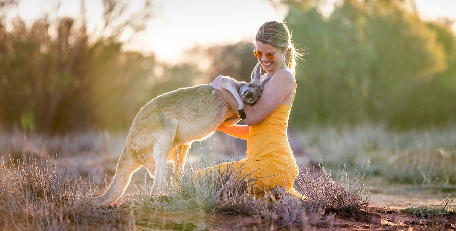 Tourism playing with wallaby