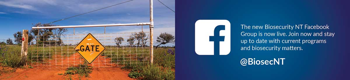 Biosecurity NT Facebook group is now live, joing @BiosecNT