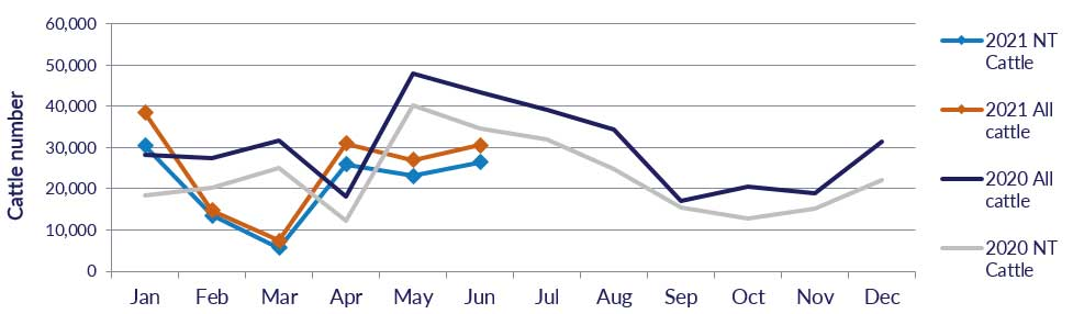 Graph showing cattle numbers through the Port of Darwin since January 2020